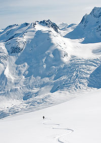 Photo by Damian Cromwell. Skier in pristine mountain snow.